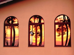 windows (Harlory) Tags: windows sunset orange color reflection tree silhouette nikon romania coolpix p100 slatina nikonp100
