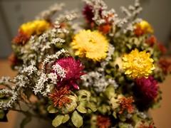 Later Partner - Flowers from Team