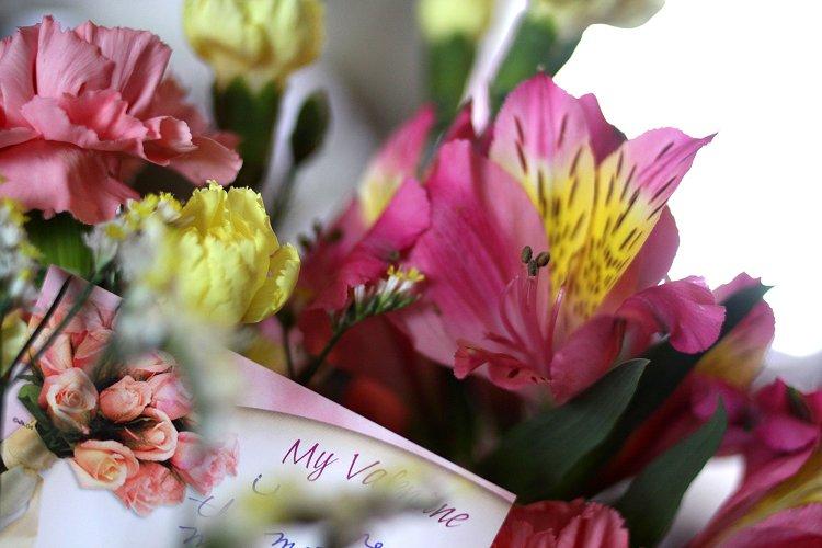 02-15-flowers2