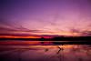Wide Open Spaces (JGo9) Tags: night clear waterlakeh20sunsetcedarcreeklakestanford kystanfordkykentuckylincolncountylincolnreflectioncolorsvibranttreetreescloudsndpolarizerfilterstackingcanont1ieosrebel