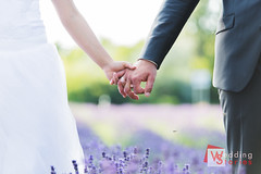 Noémi és Gábor (Wedding Stories) Tags: balaton balatongyörök csonti felsőrajk keszthely levendulastrand szépkilátó tihnany ttd