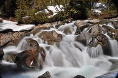 paradise creek 7392 (Light of the Moon Photography) Tags: mountain snow water creek volcano washington nikon sunny falls mount rainier melt runoff d90