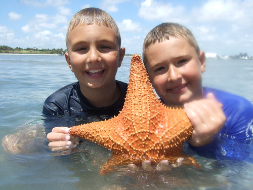 Christopher, Nicholas and starfish