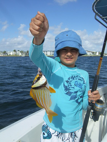 Christopher catches a porkfish