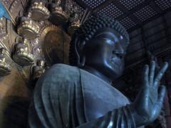 The Daibutsu (Great Buddha)