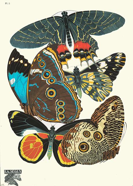 007-Papillons vingt planches en phototypie coloriees..1928- Eugene Alain Seguy