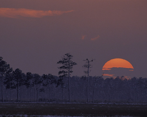 Sunset at Blackwater National Wildlife Refuge in Maryland