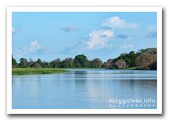 Canal do Jari, Brazil