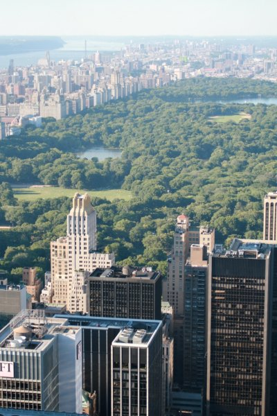 Top of the Rock: Central Park View