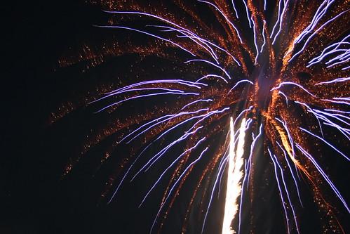 Fireworks flowers