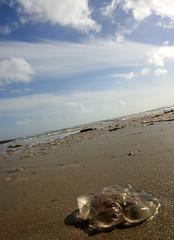 Jelly..... (The Merry Monk) Tags: blue ireland 3 beach clouds sand jellyfish july week mayo seasky atmyfeet mulranny 7daysofshooting texturetuesday