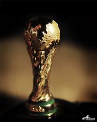 Who will win the World Cup? (ZiZLoSs) Tags: world africa macro cup canon eos who south will 7d usm win f28 aziz 2010 reflaction ef100mmf28macrousm abdulaziz عبدالعزيز ef100mm zizloss المنيع 3aziz canoneos7d germanyvsspain almanie abdulazizalmanie uruguayvsnetherlands httpzizlosscom