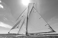 WWCR10-0166 rick tomlinson (www.CowesOnline.com) Tags: classic cup photography big marine sailing yacht royal rick class solent online yachts cowes eleonora squadron westward mariette mariquita tomlinson tuiga