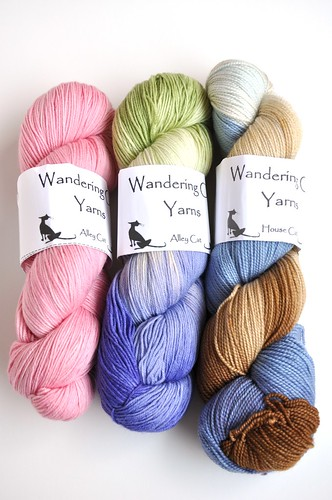 Wandering Cat Yarns June 7
