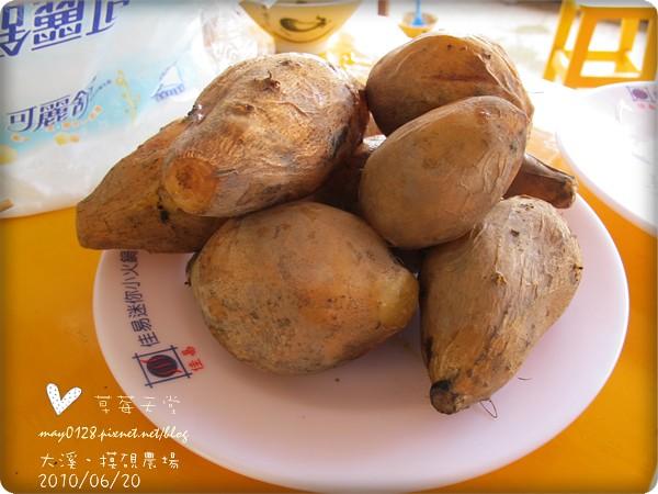 大溪摸硯農場140-2010.06.20