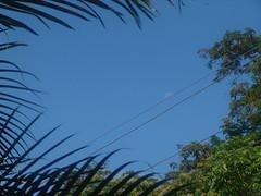 de Manglaralto, pa'dentro (Juan6Carlos) Tags: santa travel sea costa naturaleza sol beach nature familia criollo mar ecuador pacific playa paisaje palmeras salinas arena viajes elena tropical hermoso paraiso pacifico guayaquil oceano celeste balneario guayas calido manglaralto guayaco