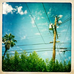 get connected (S.M.H.M.) Tags: travel sky cloud la post palmtree smp monier hipstamatic stephanemonierphotography