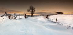 Winter Solstice, Barkisland (calderdalefoto) Tags: christmas uk winter england snow english rural landscape britain scene british halifax wintry calderdale barkisland anawesomeshot takeaview landscapephotographeroftheyear robertbirkby