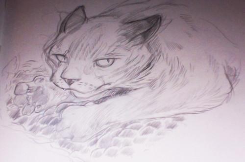cat_2_lindsaynohl