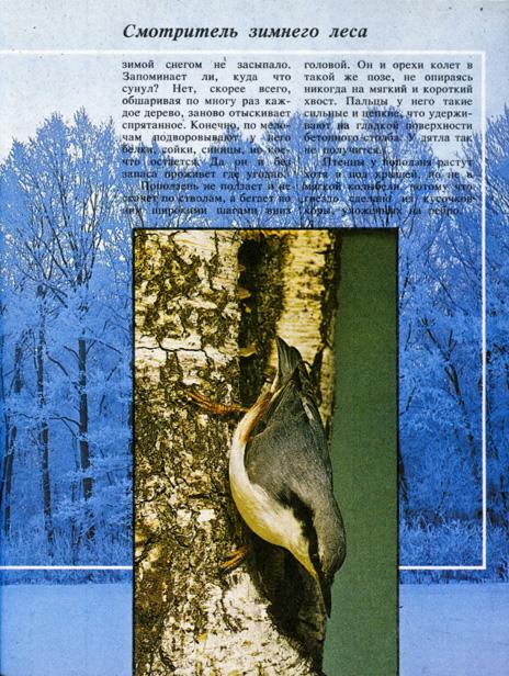 birds_page_002 (1)
