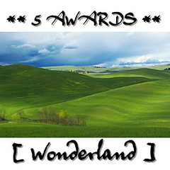 icon_wonderland_5awards