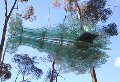 20100711_7284 Swarm by Nigel Helyer (williewonker) Tags: glass australia victoria mansion swarm werribee wyndham helenlempriere nigelhelyer werribeepark helenlemprierenationalsculpturalaward nationalsculpturalaward