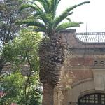 Palmera Can Pahissa thumbnail