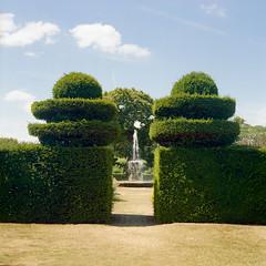 fountain (Andrew :-)) Tags: summer 120 6x6 film fountain mediumformat garden kodakportra400vc sunny hedge hatfieldhouse hertfordshire mamiyac33 sekor80mm28