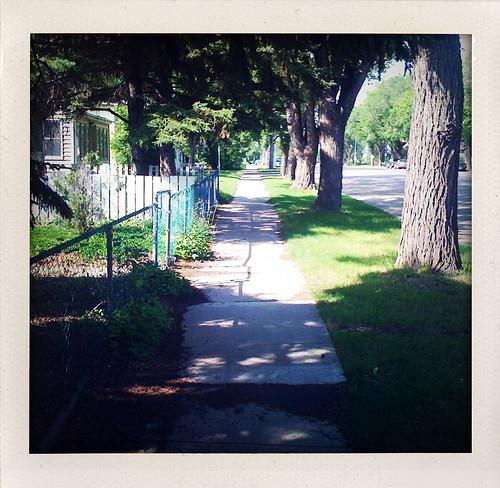 Saskatoon street