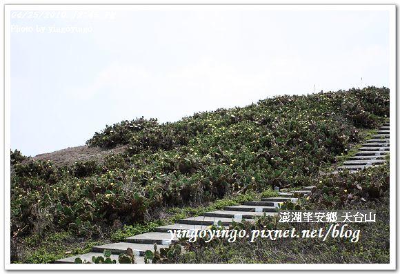 澎湖之旅_望安鄉(天台山)990425_I0253