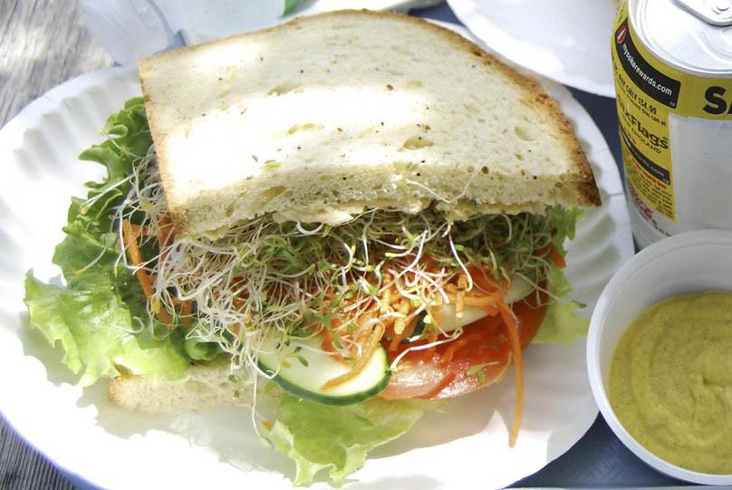 hummus-sandwich-1