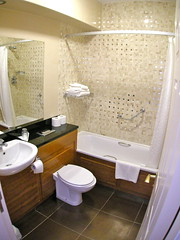 Swanky Bathroom