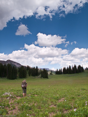 Moraine Meadow