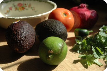 guacamole recipe: the ingredients!