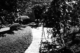 町田樹 画像29