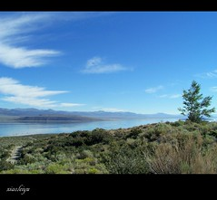 Mono lake (Juliet Yu) Tags: voyage ca trip travel blue sky cloud green landscape scenery tour view lakes journey hwy395 peregrination peregrinate