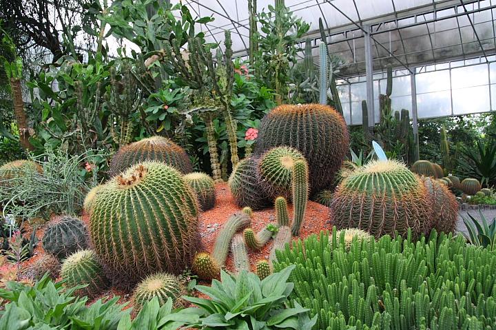 綠世界生態農場0028