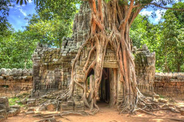 Angkor Wat Stump House HDR