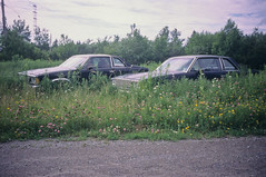 double (patrickjoust) Tags: auto county leica wild canada flower color green cars film nova grass car rural america 35mm ed nikon automobile fuji with scanner north goggles rangefinder slide v chrome vehicle cape positive scotia m3 expired 35 fujichrome range finder e6 breton wetzlar astia 100f f35 reversal summaron leitz autaut leicasummaron35mmf35