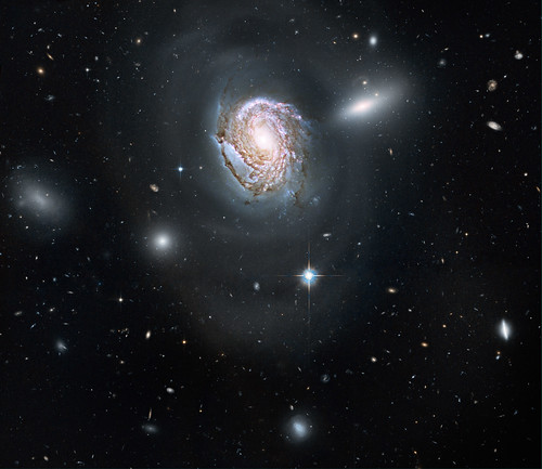 Hubble Sees 'Island Universe' in the Coma Cluster
