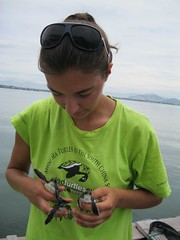 Laura McMahon w/ turtles