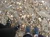 davidaola nell'acqua di Wasserburg