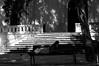 (...storrao...) Tags: street sleeping blackandwhite bw man portugal church bench nikon lisboa streetphotography banco igreja photowalk rua dormir homem onthestreet lx d90 sooc ruadaescolapolitécnica storrao sofiatorrão nikond90bw worldwidephotowalk2010 3rdworldwidephotowalk