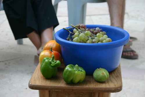 Fruits from the vine