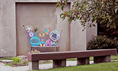 Whimsical bench (blmiers2) Tags: newyork beautiful bench nikon colorful rochester coolpix whimsical s3000 whimsicalbench blm18 blmiers2