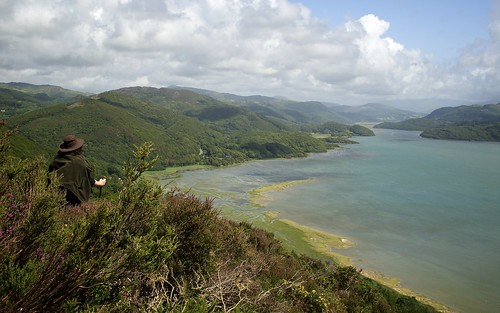 The Mawddach