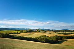 Sensommer i Nannestad (#2) (Krogen) Tags: nature norway landscape norge day natur norwegen olympus clear scandinavia akershus romerike krogen landskap noreg skandinavia nannestad