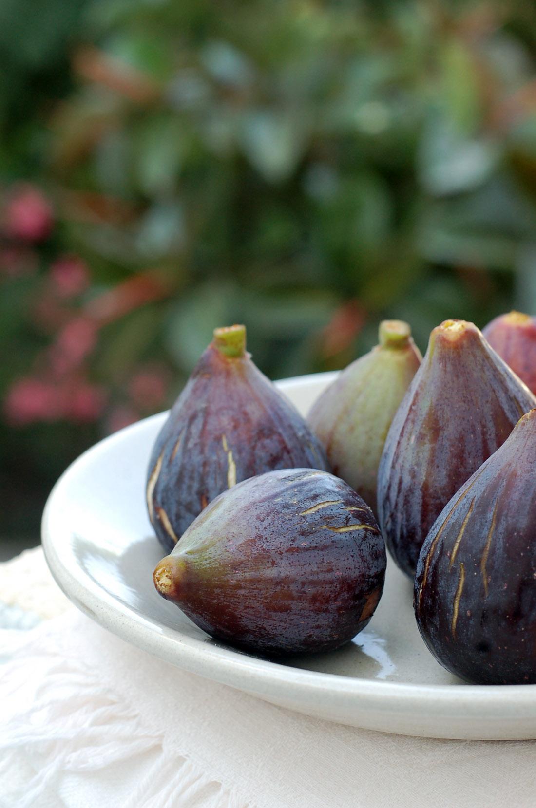 figos // figs