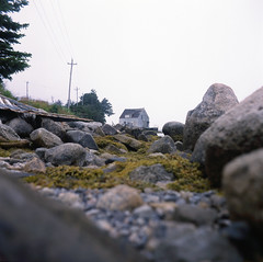 (patrickjoust) Tags: ocean road house canada color green 120 6x6 tlr film water nova stone analog rural america square lens french enna reflex seaside moss focus fuji village mechanical cove ns country north patrick twin slide v chrome automatic epson medium format munchen 28 positive manual 500 scotia peggys expired 80 joust fujichrome e6 f28 werk astia 80mm 100f reversal v500 ennit rollop 8cm lipca lithagon autaut patrickjoust