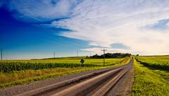 Iowa Landscape USA